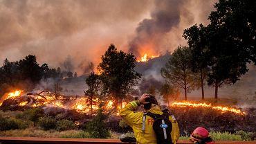 Pożary w Kalifornii.