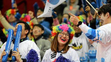 Za nami dwa dni hokejowych mistrzostw świata w Katowicach. Polscy hokeiści na razie nie dają kibicom powodów do zadowolenia. Porażki z Włochami (1:3) i Koreą (1:4) ostudziły zapał i emocje fanów. Na trybunach Spodka i tak nie brakuje jednak kolorowych i rozbawionych ludzi. Silną grupę stanowi też wsparcie dla reprezentacji Korei.