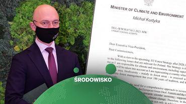 Polska sprzeciwia się większej ochronie lasów w UE