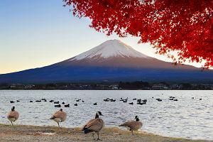TOP 10: wulkany dostępne dla turystów