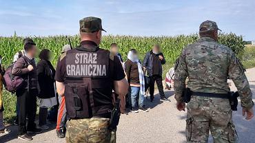 Straż graniczna zatrzymała 62 migrantów za przekroczenie granicy z Białorusią