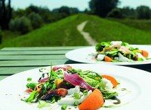 Letnia sałatka z morelami, mozzarellą i szynką serrano - ugotuj
