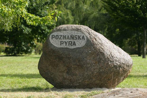 Pomnik Pyry wPoznaniu