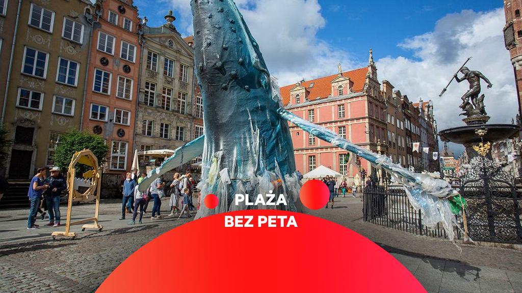 Wieloryby przy Fontannie Neptuna w Gdańsku