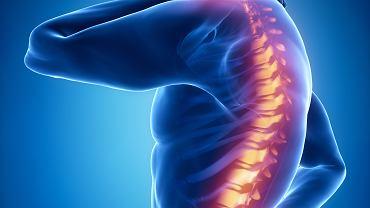 Kanał kręgowy i jego schorzenia są częstą przyczyną bólu pleców.