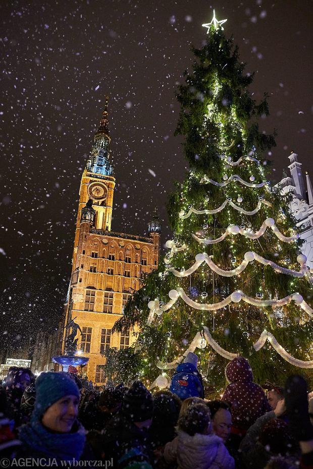 Choinka w Gdańsku