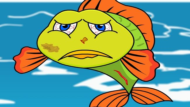 ryby w morzu darmowe randki