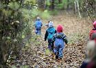 Nowy pomysł na edukację w Olsztynie. Powstaje leśne przedszkole