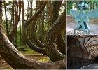 8 wyjątkowych miejsc w Polsce na jednodniowy wypad [CZĘŚĆ II]