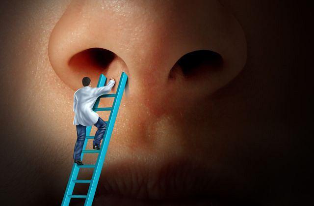 Szukaj zdrowia w nosie. To dobry kierunek