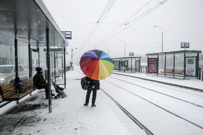 Pierwszy śnieg w Poznaniu