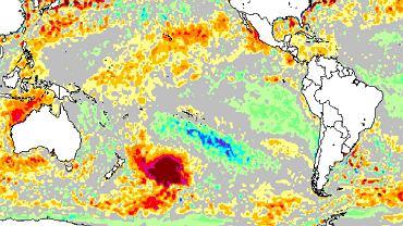Nietypowa 'plama' ciepłej wody nieopodal Nowej Zelandii