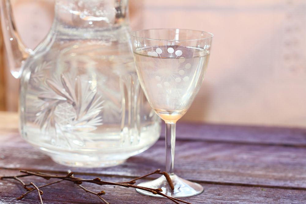 Nalewka z soku z brzozy