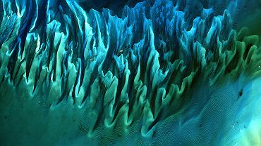 Piaski i wodorosty na Bahamach