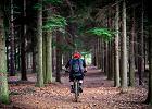 Jazda na rowerze a koronawirus. Czy po zmianie obostrzeń przejażdżki są dozwolone?