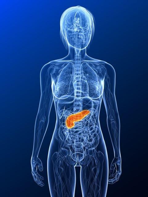 W większości przypadków przewlekłe zapalenie trzustki jest konsekwencją nadużywania alkoholu