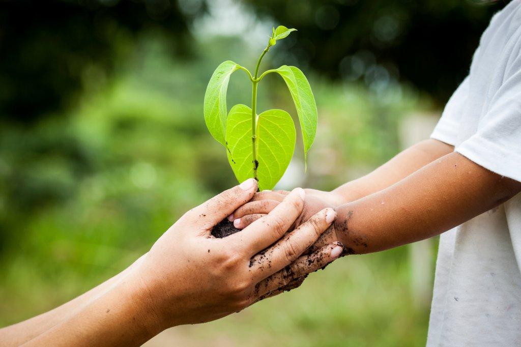 Dzień Ziemi obchodzony jest 22 kwietnia. Co dobrego możemy zrobić tego dnia (i nie tylko) dla naszej planety?