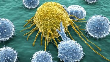 """Pojęcie """"rak"""" odnosi się do zmian m. in. w płucach, jelicie grubym, trzustce lub nerce"""