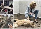Anja Rubik bawi się z małym lwiątkiem. To najsłodsze wideo, jakie dziś obejrzycie!