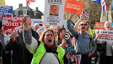 Zwolennicy brexitu protestowali w Londynie