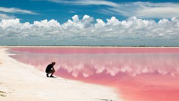 """Las Coloradas w Meksyku, to tutaj można zobaczyć """"różową lagunę"""""""