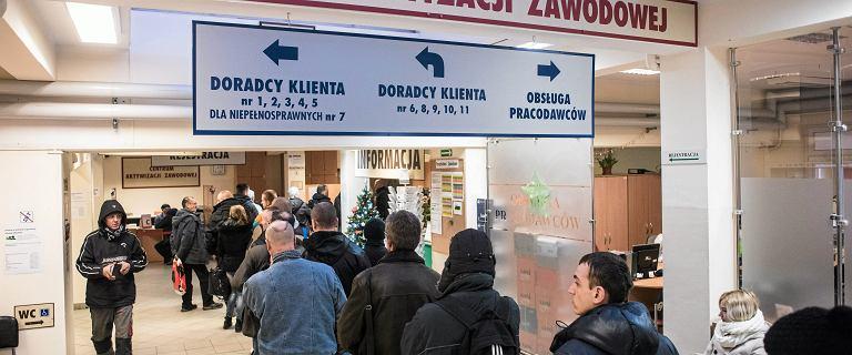 16 mln zatrudnionych w Polsce. 'Ssanie' na pracowników w transporcie