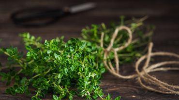 Tymianek (znany też jako macierzanka, tymianek właściwy, tymian) jest aromatyczną rośliną o charakterystyczny smaku i zapachu.