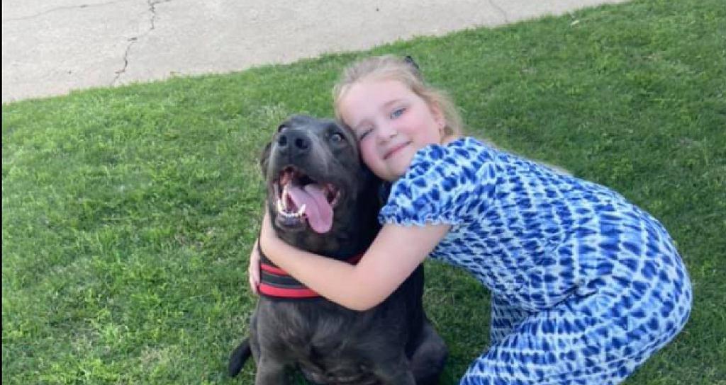 Pies pocieszał dziecko po stracie ojca