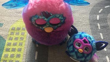 Furby Boom Crystal śpi, a Furby Furblings bacznie obserwuje nasze poczynania.