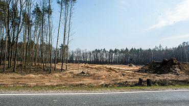 Obecnie trwają prace nad kolejnymi podporami mostu, który zepnie oba brzegi Brdy niedaleko północnej granicy Bydgoszczy. Potężne żurawie i dźwigi samojezdne są w użytku. Jeszcze wiosną kładziona będzie płyta, na której powstaną cztery pasy jezdni. Odcinek pomiędzy Aleksandrowem a Tryszczynem, na którym znajdzie się most ma 14.7 km długości. Wykonuje go konsorcjum firm: Przedsiębiorstwo Usług Technicznych INTERCOR, jako lider i partner - TRAKCJA PRKiI S.A (partner)