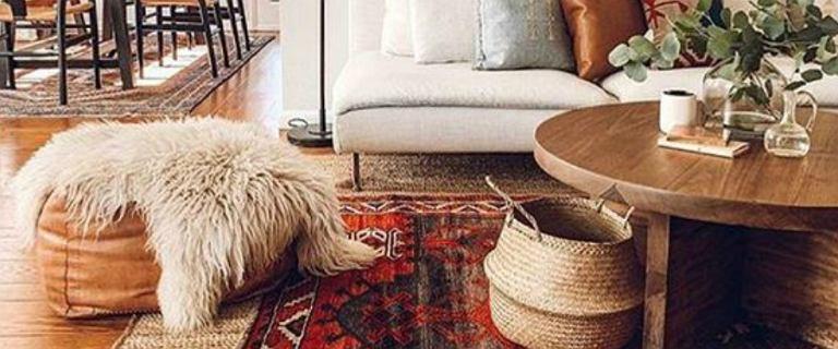 Kolorowe dywany do twojego wnętrza. Teraz kupisz je taniej nawet o 65%!