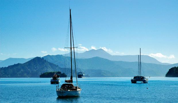 nowe przepisy dotyczące randek w Zelandii