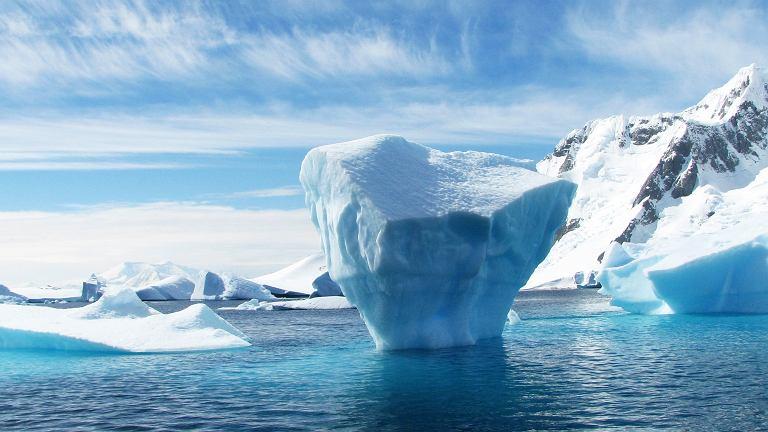 Bar z ginem na biegunie północnym. Jeśli do niego dotrzesz, nigdy nie zabraknie ci ginu