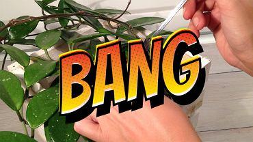 Jak zrobić odżywczą miksturę dla roślin?