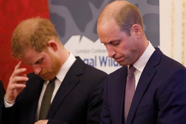 Książę William i Harry