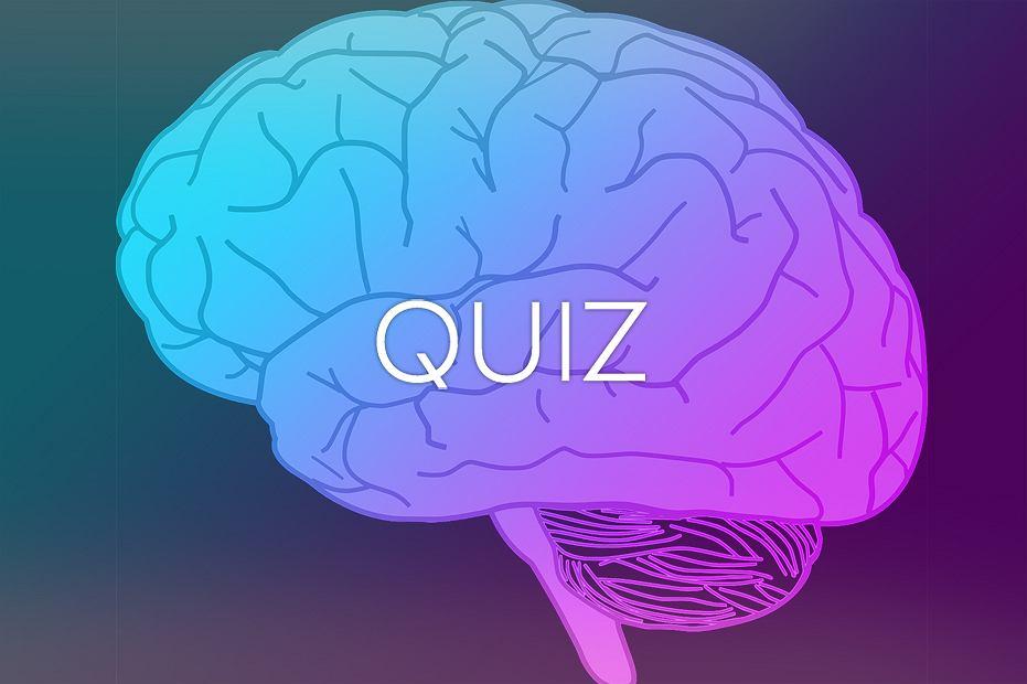 Pamięć Mózg