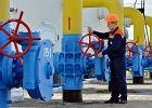 Polak kandydatem na szefa ukraińskich gazociągów