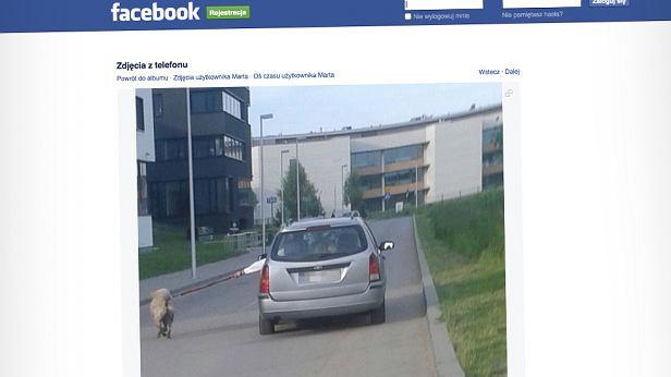 Pies na smyczy biegnący za autem, do sytuacji doszło na Wilanowie