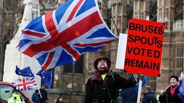 Demonstracja zwolenników Brexitu pod Pałacem Westminsterskim w Londynie, 9 stycznia 2019.