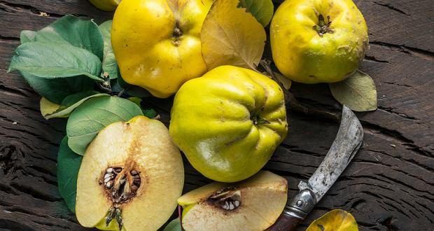 Pigwa - sprawdzony sposób na odporność [właściwości, herbata, nalewka]