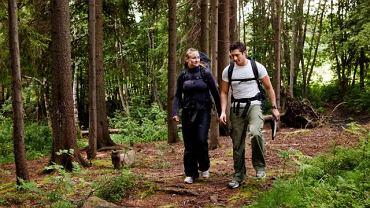 Wycieczka czy zwykły spacer po lesie to najprostsza droga by zostać ukąszonym przez kleszcza