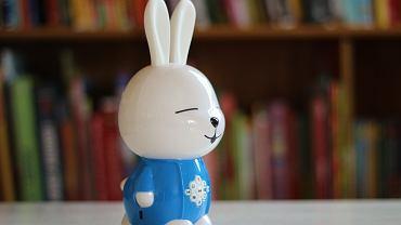 Multimedialny króliczek Alilo / fot. Ania Oka