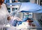 W gdańskim szpitalu czekają na nową karetkę. WOŚP kupi ją za pieniądze z ostatniej puszki Pawła Adamowicza