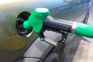Gaz czy benzyna?
