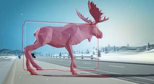 WWykrywanie dużych zwierząt - wideo