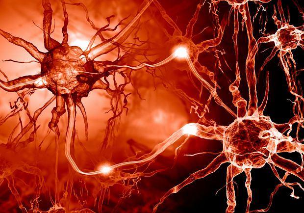Elektroneurografia (ENG) to badanie, które pozwala sprawdzic czy włókna ruchowe i czuciowe występujące w nerwach obwodowych działają prawidłowo