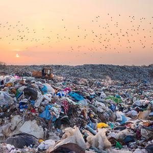 Ile rozkłada się plastik, szkło i inne śmieci? Zdjęcie ilustracyjne