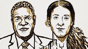 Nagrodę w imieniu ofiar przemocy seksualnej dostali wspólnie kongijski ginekolog Denis Mukwege specjalizujący się w leczeniu ofiar gwałtów i jezydzka aktywistka i była niewolnica seksualna Nadia Murad.