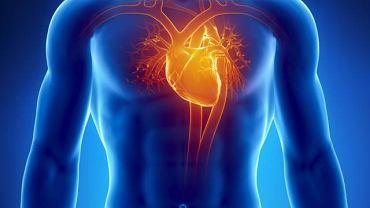 Jednym z podstawowych badań oceniających pracę serca jest badanie EKG