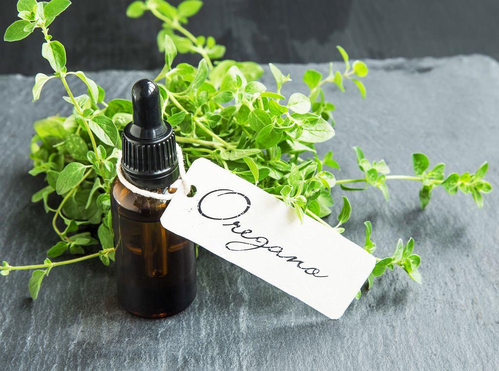 Olejek z oregano znany jest ze swojego pozytywnego wpływu na trawienie. Zdjęcie ilustracyjne